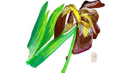 Digital Art - Am Iris Of Color by Debbi Saccomanno Chan