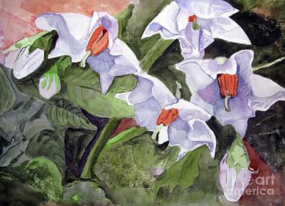 Amanda's Blue Potato Flowers Art Print