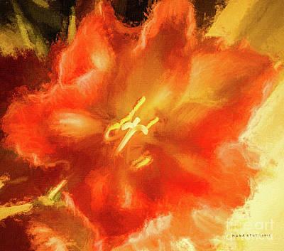 Amaryllis Orange Yellow Red Art Print by Mona Stut
