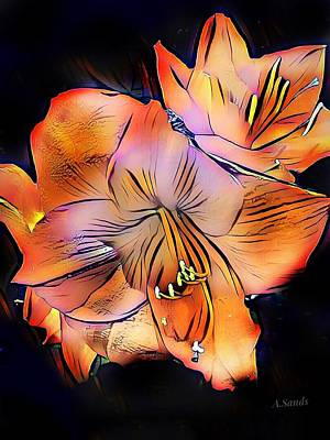 Painting - Amaryllis Popart by Anne Sands