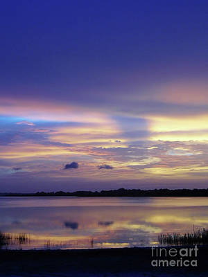 Photograph - Amazing Beauty In The Morning by D Hackett