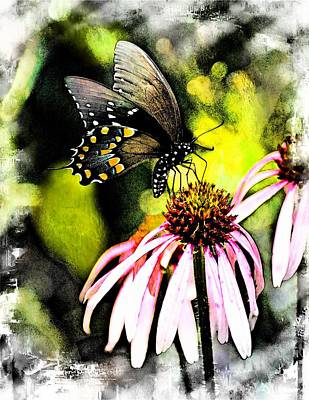 Photograph - Amazing Butterfly Watercolor 2 by Marty Koch
