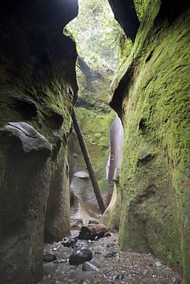 Juan De Fuca Provincial Park Photograph - Amazing Emerald Green Cave Waterfall Inside Sombrio Beach, Vancouver Island 1 by Andrew Kim