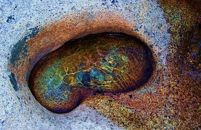 Photograph - A Womb In Nature by Sean Sarsfield
