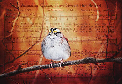 Photograph - Amazing Grace by Trina Ansel