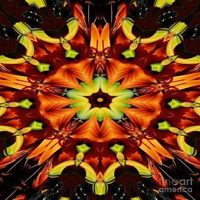 Digital Art - Amazing In Orange by D Hackett