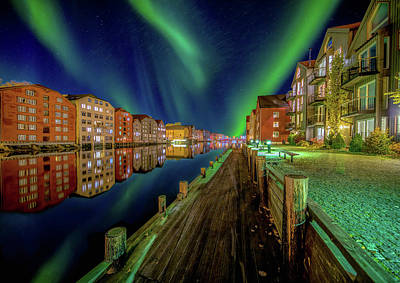 Bear Photography - Amazing nordlys northern light over Trondheim by Aziz Nasuti