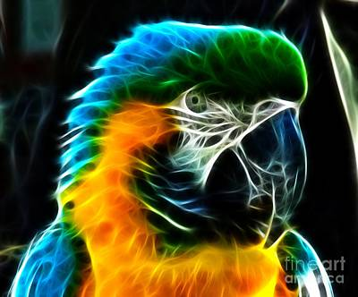 Fabulous Mixed Media - Amazing Parrot Portrait by Pamela Johnson