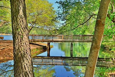 Photograph - Amazing Reflections At Sesquicentennial State Park by Lisa Wooten