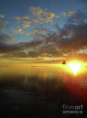 Photograph - Amazing Sunset by D Hackett