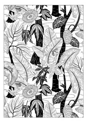 Frogs Drawing - Amazon Black And White by Jacqueline Colley