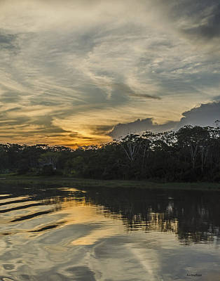 Photograph - Amazon Sunset by Allen Sheffield