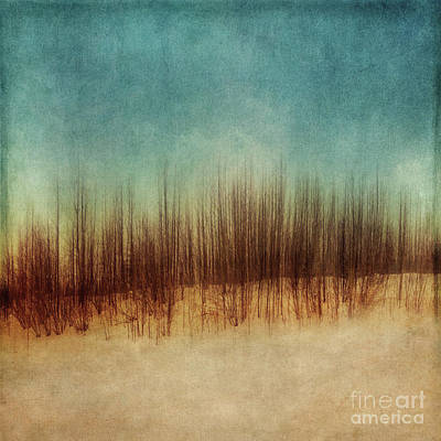 Amber And Blues Art Print by Priska Wettstein
