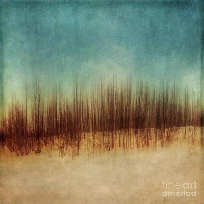 Amber And Blues Print by Priska Wettstein