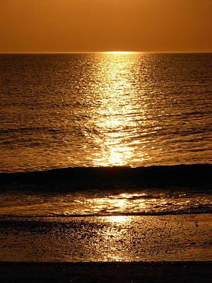 Photograph - Amber Waves by Amanda Vouglas