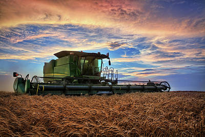 Grain Photograph - Amber Waves by Thomas Zimmerman