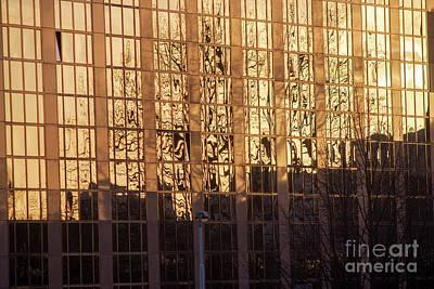 Photograph - Amber Window by Ana Mireles
