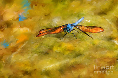 Digital Art - Amber Wing Dragonfly by Lisa Redfern