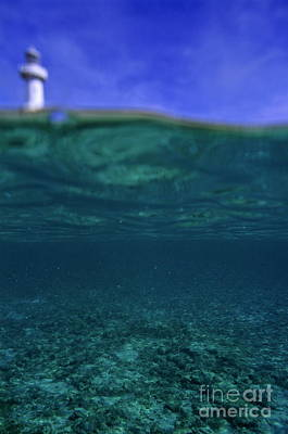 Amedee Lighthouse Island Seen From Underwater Art Print by Sami Sarkis