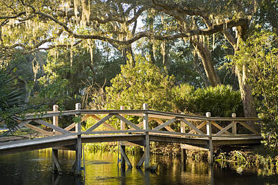 Amelia Island Photograph - Amelia Island Plantation, Bridge by Richard Nowitz