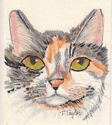 Drawing - Amelia by Terry Taylor