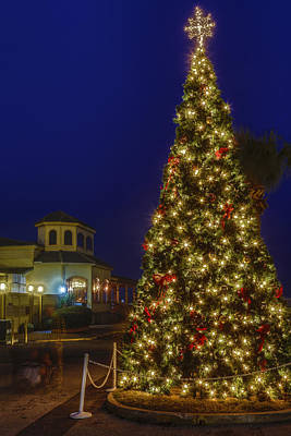 Photograph - Fernandina Beach Christmas Tree by Paula Porterfield-Izzo