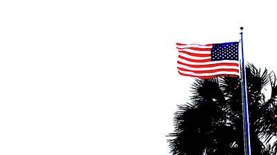 Photograph - America Flag Palm Delray Beach Florida by Lawrence S Richardson Jr