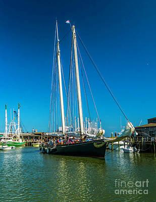 Historic Schooner Photograph - America In Cape May by Nick Zelinsky