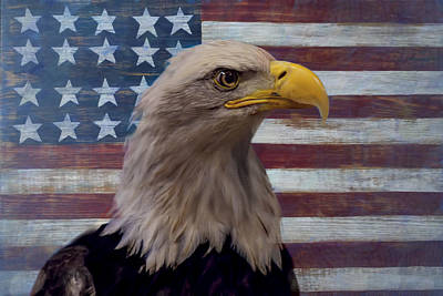 Folk Art Photograph - American Bald Eagle And American Flag by Garry Gay