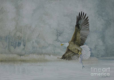 Painting - American Bald Eagle by Charles Owens
