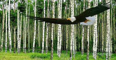 Derek Jeter Mixed Media - American Bald Eagle, Hunting, Cutthroat River Basin, Colorado by Thomas Pollart