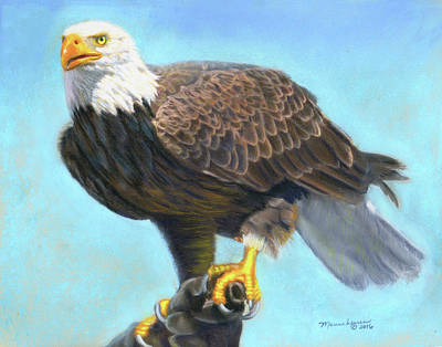 Pastel - American Bald Eagle by Melissa Herrin