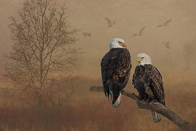Photograph - American Bald Eagle Pair by Patti Deters