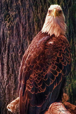Digital Art - American Bald Eagle by Trey Foerster