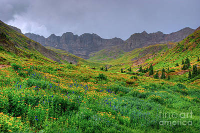 Photograph - American Basin Summer Storm by Teri Brown