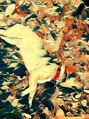 Digital Art - American Beauty by Leapdaybride Visual Arts