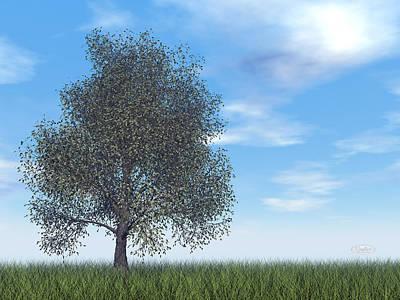 Route 66 - American beech tree - 3D render by Elenarts - Elena Duvernay Digital Art