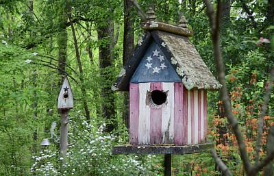American Birdhouse Art Print