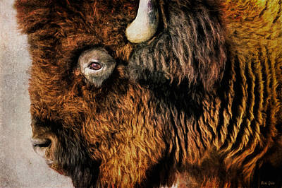 Photograph - American Bison by Anna Louise