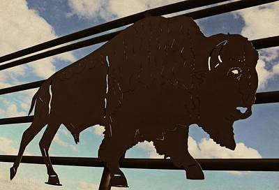 Photograph - American Bison Silhouette by Chris Berry
