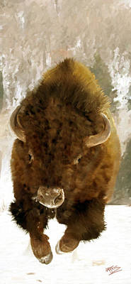 Painting - American Bison by James Shepherd