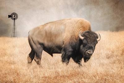 Bison Digital Art - American Bison by Lori Deiter