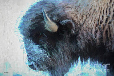Digital Art - American Buffalo Profile Painting by Bill And Deb Hayes