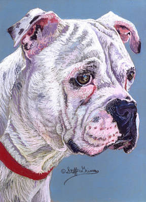 American Bulldog Art Print by Stephanie Grimes