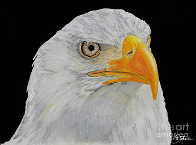 American Eagle Art Print by Bill Richards