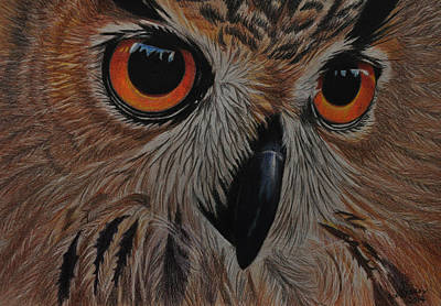 Art Print featuring the drawing American Eagle Owl by Jo Baner