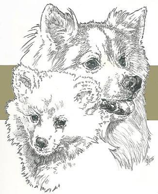Mixed Media - American Eskimo by Barbara Keith