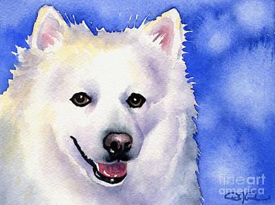 American Eskimo Dog Painting - American Eskimo by David Rogers