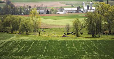 Photograph - American Farmland by Paul Ross