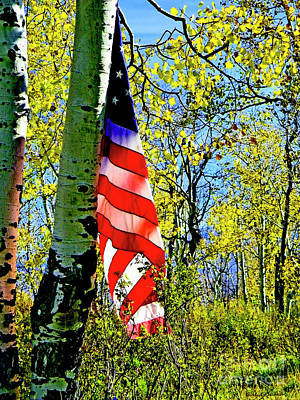 Photograph - American Flag A Veteran Hunters Homage by Dale E Jackson